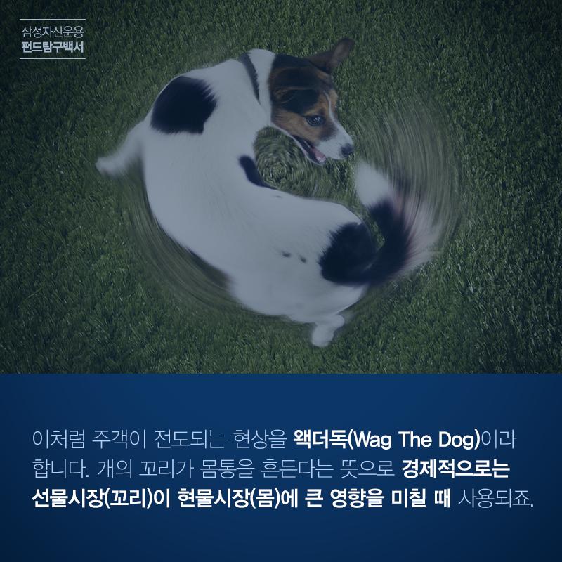 삼성_펀드탐구백서_151210_3 왝더독 '개의 꼬리가 몸통을 흔든다?' 왝더독 (Wag The dog)   삼성_펀드탐구백서_151210_3                           151210 3