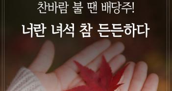 삼성자산운용_펀드밀어보기_배당주장기_1표지_170914